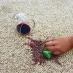 If You've Got a Carpet Stain, We've Got a Cleaning Solution!