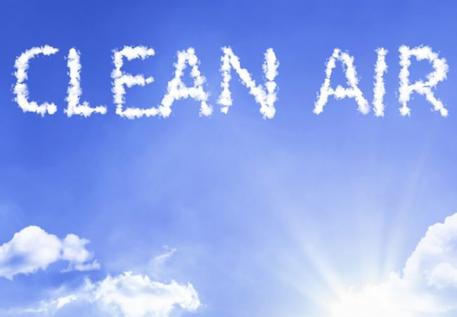Indoor Air Pollutants: Out with the Bad Air, In with the Good!