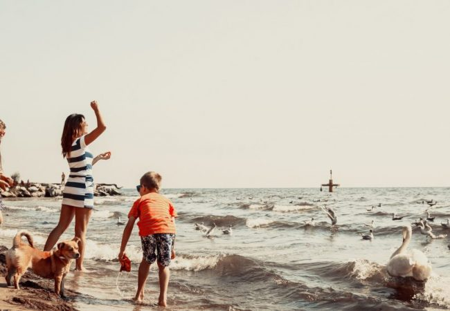 How to Keep Kids Active at Home During Summer!