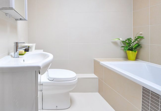 Step-by-Step Guide: How to Clean Your Toilet (Inside and Outside!)