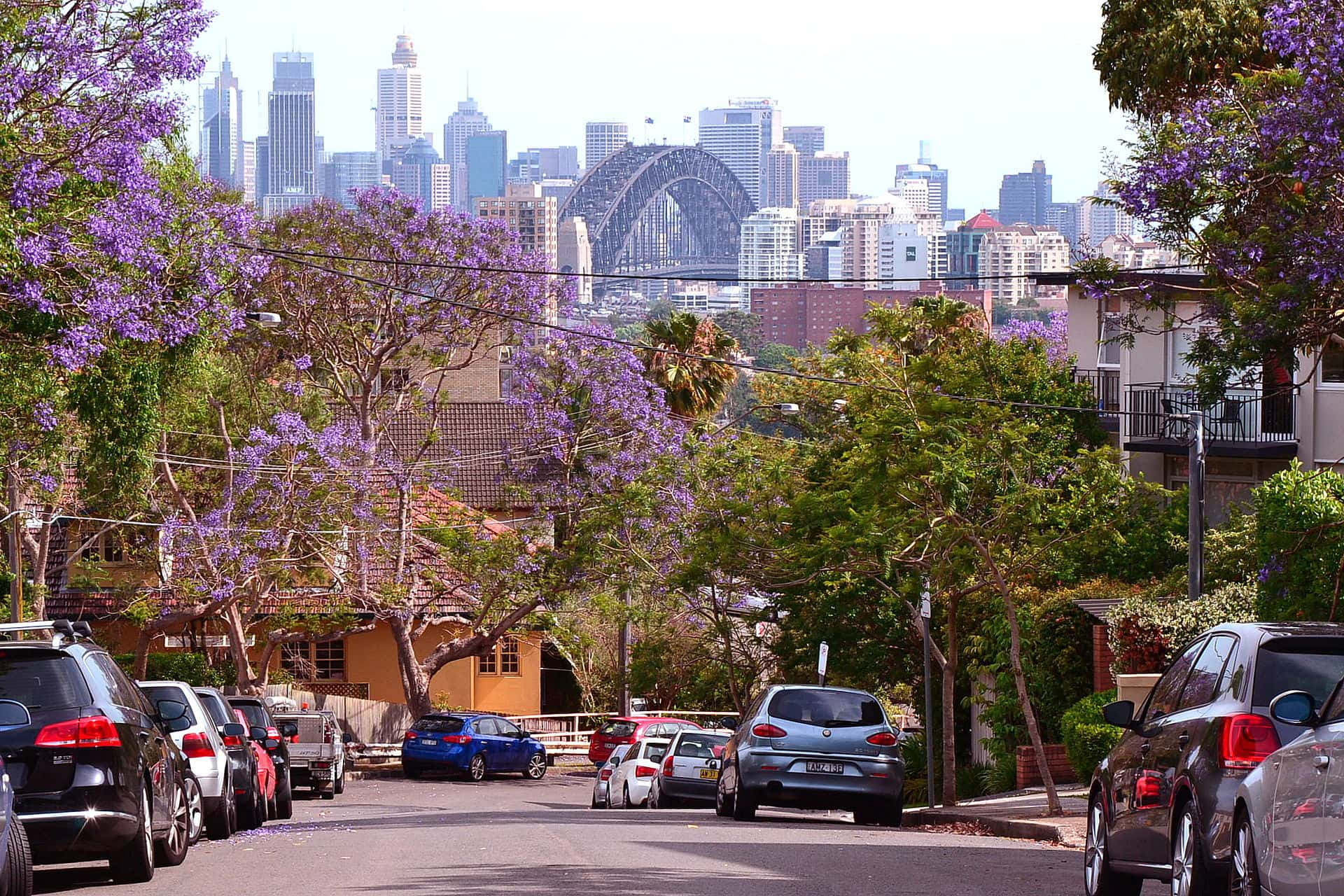 View from Bent Street - Neutral Bay, Sydney